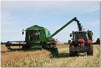 Foder spannmål korn, vete, havre
