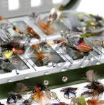Flugaskar med utvalda flugor