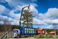 Trädplockning, Trädfällning, RUT berättigat