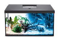 Nytt akvarium 54 liter LED - Billigt