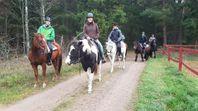 Turridning på westernhästar