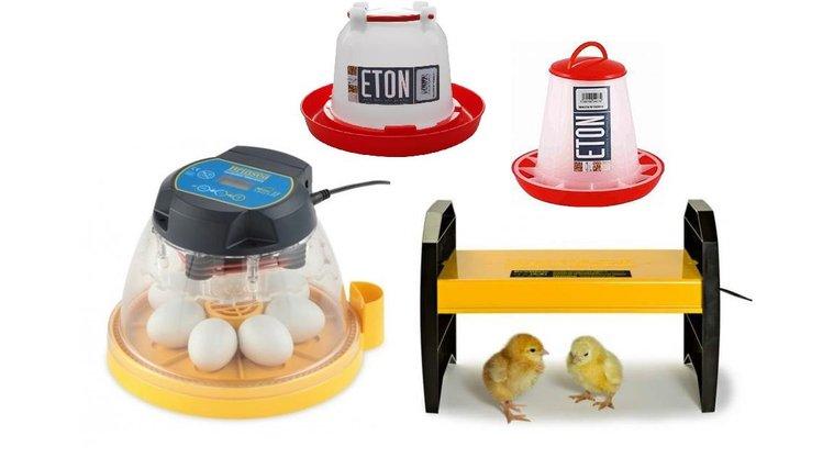 Äggkläckningsmaskin nybörjarsats Mini Advance - Sverige - Allt du behöver  för att börja kläcka.1 243fb98796c0c